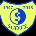 logo_tjsokol_sudice